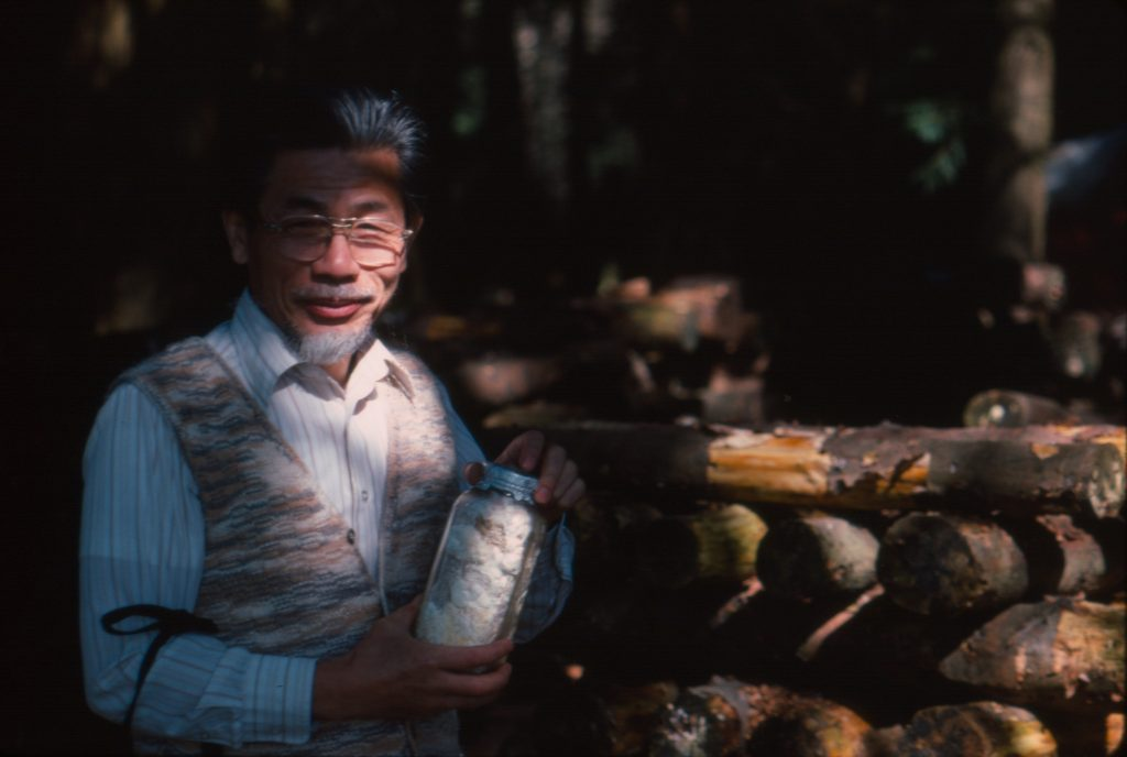 Dr. Theodore Takeuchi  Shiitake farm VMS tour 1983 (photo: Paul Kroeger)