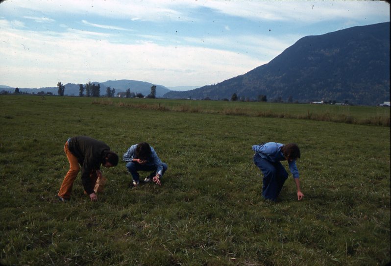 Picking Liberty Caps in Fraser Valley 1977  (photo: Stan Czolowski)